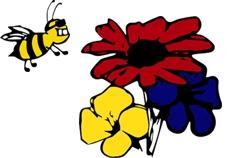 A und Z Blumen