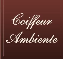Coiffeur Ambiente
