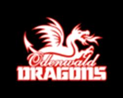Basketball Club Odenwald Dragons Erbach Michelstadt e. V.