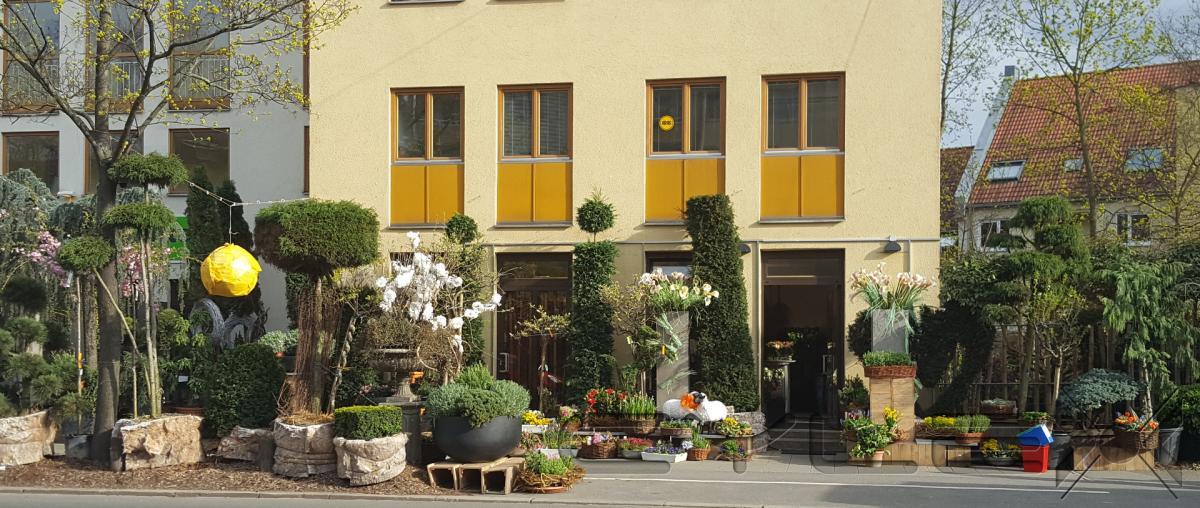 garden greens inh uwe schlosser blumen pflanzen einzelhandel in n rnberg sankt jobst. Black Bedroom Furniture Sets. Home Design Ideas