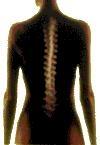 Stefanie Kühn Fachärztin für Innere Medizin
