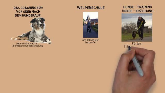 Das Bietet Ihnen - Der Hunde Coach