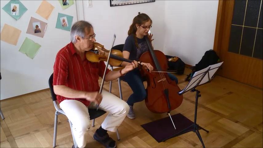 Geigen-/Cellounterricht
