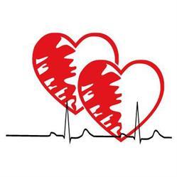 Dr. h.c. Tuncay Yesilöz - Facharzt für innere Medizin und Kardiologie - Estetic Lounge Witten