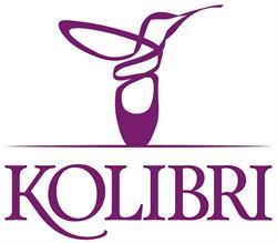 Kolibri Ballettschule / Laim