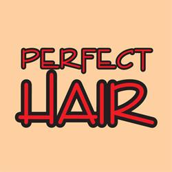 Academie PERFECT HAIR Wella