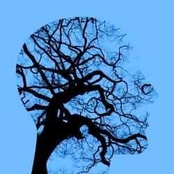 DP Lars Jacobsen - Praxis für Psychotherapie