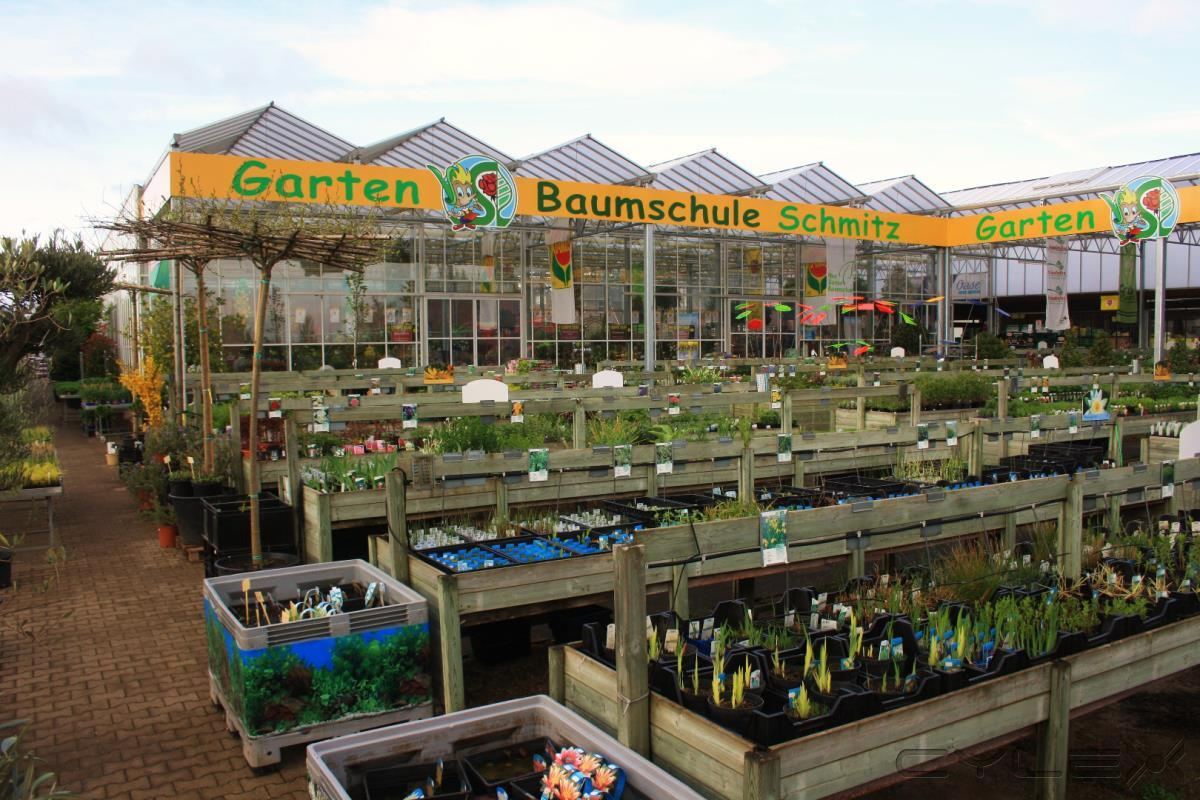 Gartencenter Schmitz schmitz baumschule in zülpich ülpenich öffnungszeiten