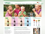 Website von H.-G. Berner GmbH & Co. KG