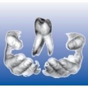 W.M.F.- Dental GmbH & Co.KG