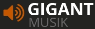 Musik Gigant Eventmanagment,Musikproduktion, Musikschule