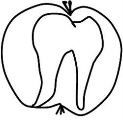 Erich Meißner Zahnarzt