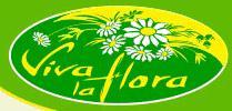 Viva-la-flora Inh. Peggy Roscher
