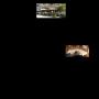 Kurfürst Wirtshaus am Markt - Abendkarte