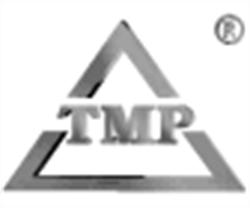 Tmp Team - IT-/ Innovationsberatung