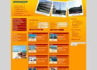 Website von REISEBÜRO SPRINGER