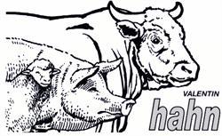 Hahn Fleisch Hahn-Fleisch.de