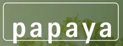 papaya thai cuisine am boxhagener