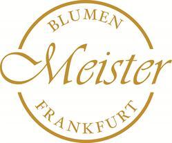 A+A Blumen Meister GmbH