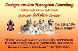 Biewer aus dem Herzogtum Lauenburg