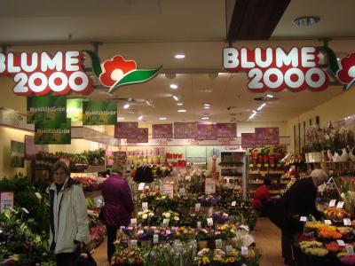 blume 2000 filialen in ihrer n he finden mit dem cylex. Black Bedroom Furniture Sets. Home Design Ideas