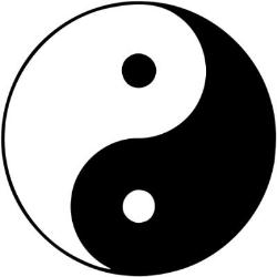 Michael Lander - Heilpraktiker - Chinesische Medizin