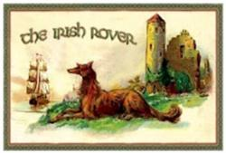 The Irish Rover - Failte