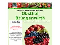 Website von Obsthof Brueggenwirth