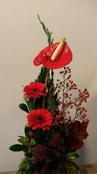 floraldikum blumen pflanzen einzelhandel in markt schwaben ffnungszeiten. Black Bedroom Furniture Sets. Home Design Ideas