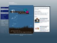 Website von MSB