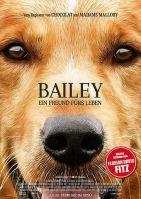 Bailey - Ein Freund fürs Leben